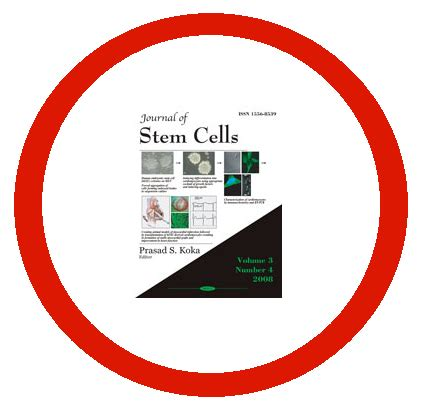 Stem Cell Research Essay - 1001 Words Bartleby